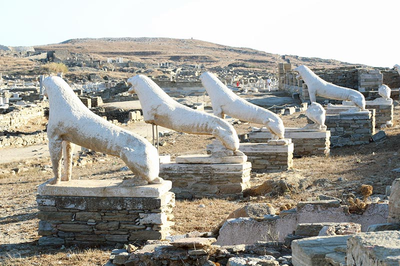 Delos greek stone lions hoto by Mike Petty