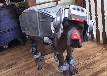 Star wars dog costume silver