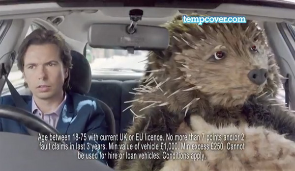 hedgehog in car tv ad animal costume maker
