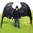 buy-large-maleficent-wings