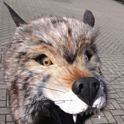 realistic fur adult wolf masquerade animal mask