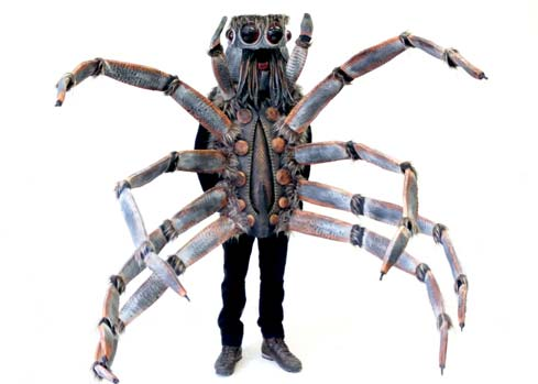 wolf spider insect Halloween costume maker